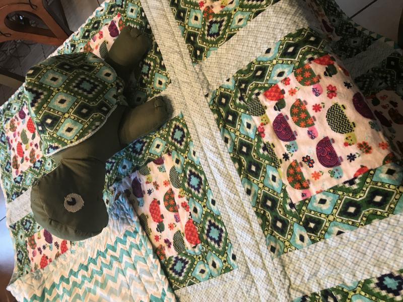 Turtle Quilt and Stuffed Turtle